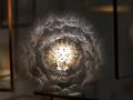 LED蒲公英之花 (3)