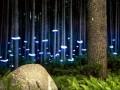 LED灯与自然融和 带你进入超现实抽象场景