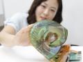 LG发布柔性透明OLED屏幕 曲率半径30R (3)