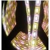 72灯5050超亮软灯条  5050 RGBW 软灯条