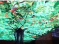 数字果树 (999播放)